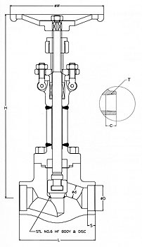 Forged Steel Globe Valves Cryogenic Service Class 800