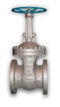 Cast Steel Bolted Bonnet Valves